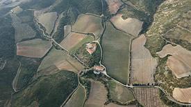 Frankreich – ein Land mit Spitzenweinen